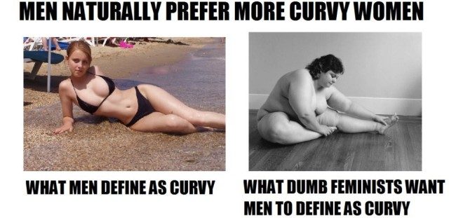 Dumb Feminists Define Curvy