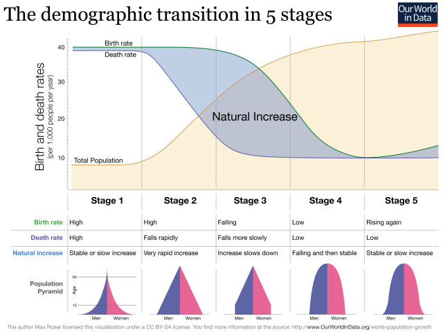 Demographic-TransitionOWID-with-pyramids-1
