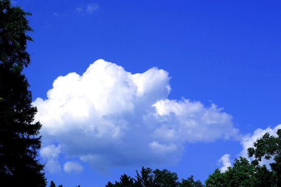 1200px-Clouds_Blue_Sky_001