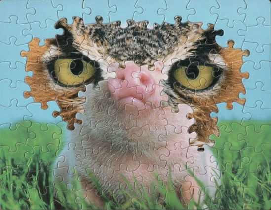 montage-puzzle-art-tim-klein-13