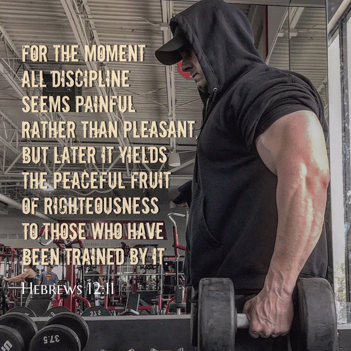 Hebrews 12-11 Discipline